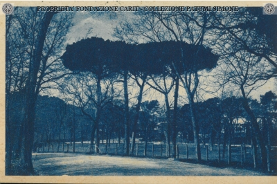 Terni e dintorni - Parco di Pagigno