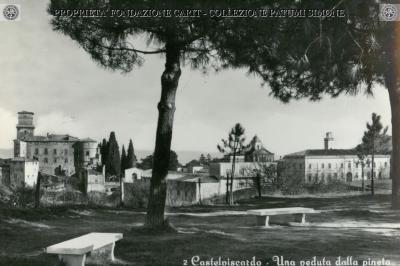 Castel Viscardo - Una Veduta dalla Pineta